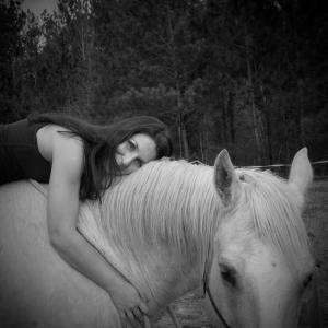 leslie's horse #2